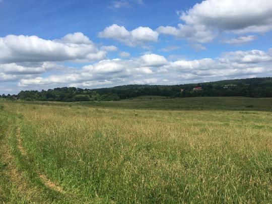 Grassland Restoration Seminar