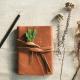 Nature Journaling Homeschool Program