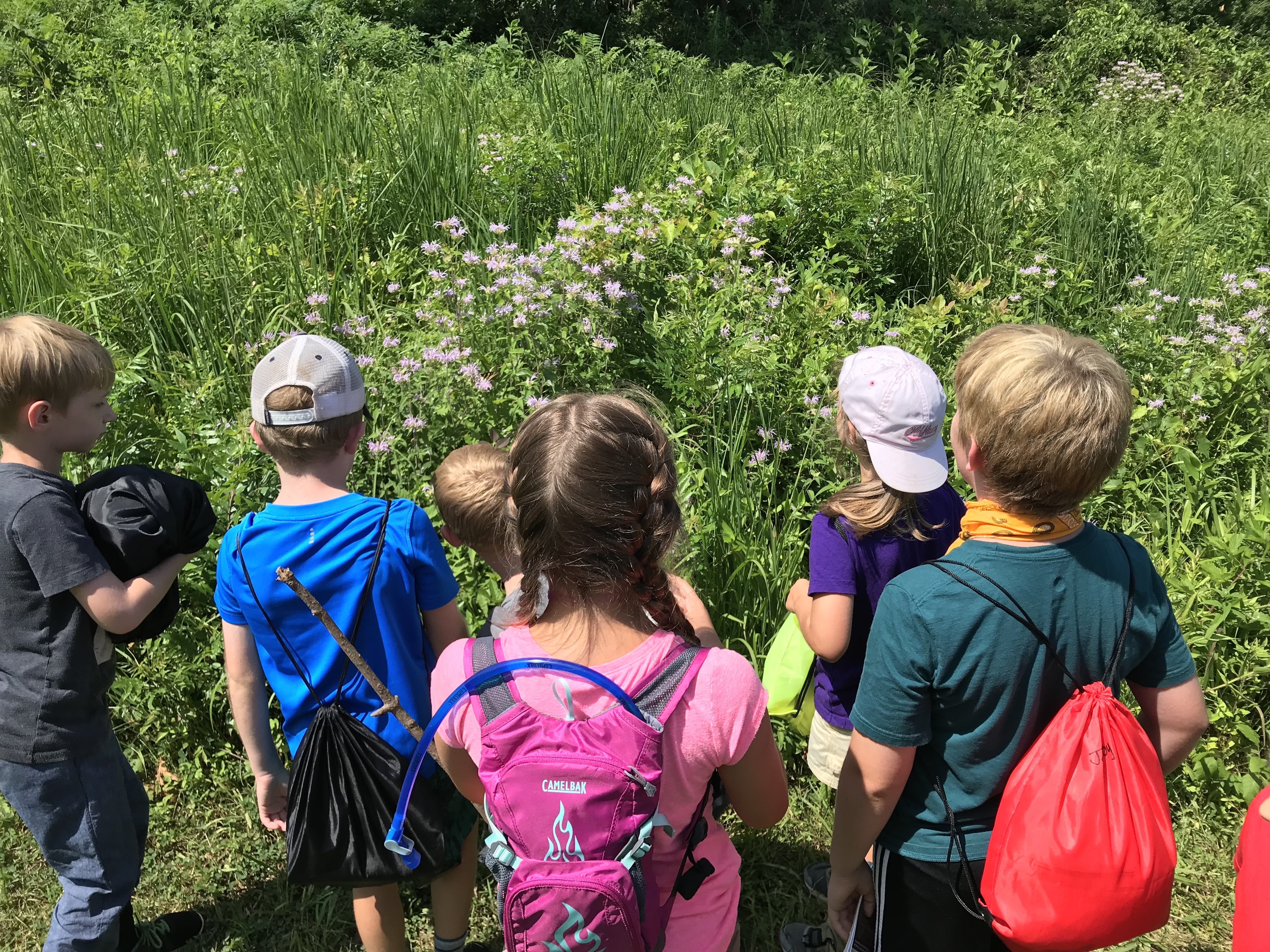 YHikes! Youth Nature Hike